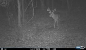 World Class Monster Buck Hunting Land in Southwestern Wisconsin