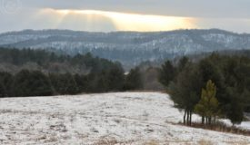 Recreational Land for Sale in Richland County, WI