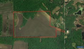 Tillable & Hunting Land for Sale Columbia County WI