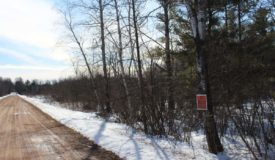 40-Acre Hunting Parcel in Clark County WI
