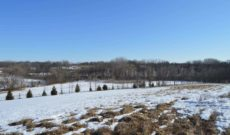 29 Acre Manitowoc County Land Auction Online Pigeon Lake Rd Valders WI