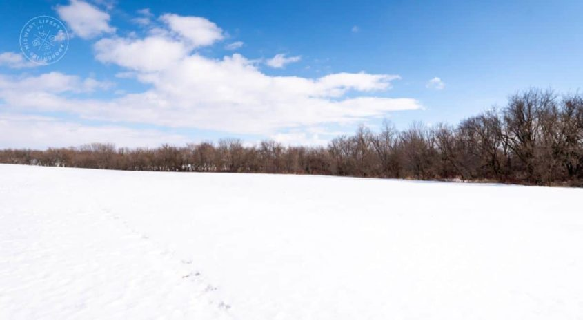132 +/- Acres Certified Organic Farm Land, Hunting land Columbia County, WI