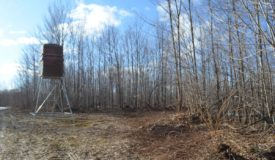 Langlade County Hunting Parcel