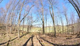 Truly Turn Key Hunting Property in Sauk County WI