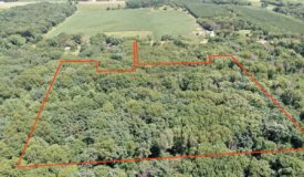 Columbia County 20 Acre Hunting Property For Sale
