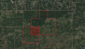 360 acre timber and hunting property for sale in Central Wisconsin