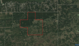Town of Rome 40 acre timber lot for sale in Adams County WI