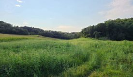 70 Acre Hunting Parcel in Monroe County WI