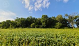 90 Acre Hunting Parcel in Monroe County WI