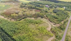 33 Acres of Buildable, Hunting land Dodge County, Town of Clyman WI