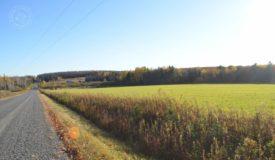 Hunting/building parcel in northwestern Marathon County