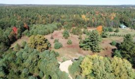 Buildable small acreage hunting and recreational property