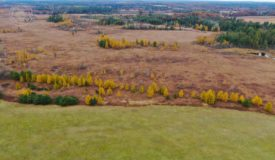 +/-83 acres of Marquette County land for sale