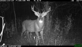 Whitetail Wonderland For Sale in Southwestern Wisconsin