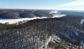 151+/- Richland County Hunting Property for Sale