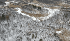 38 +/- Hunting/Recreational acres for sale Wonewoc, Juneau County WI