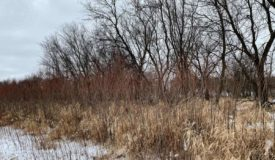 Great Hunting Parcel with Income Potential Winnebago County WI