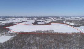 Farmland For Sale with Build Site in Richland County, Wisconsin