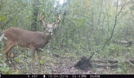 30-acre Waushara County parcel