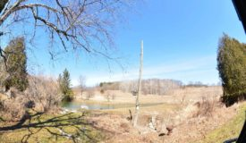 Hunting Land for Sale Juneau County Wisconsin