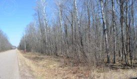 Wooded Hunting Land Marathon County WI