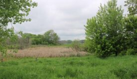 Prime Dodge County recreational land