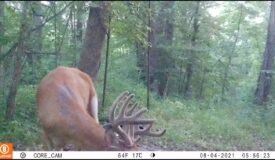 Hunting Land for Sale in Crawford County, Wisconsin