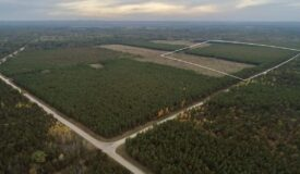 Affordable Land for sale in New Lisbon, WI